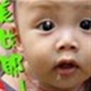 sanshui115017(115017)