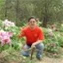 老豹子101046(101046)