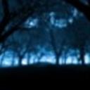 黑夜降临101050(101050)