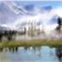 yunyou115057(115057)
