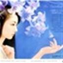 凝露玫瑰113090(113090)