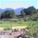 小南105114(105114)