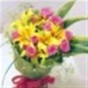 aihoo105243(105243)