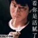 山中老虎(105341)
