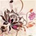 蘇小茄子(105345)
