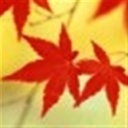 水枫(105361)