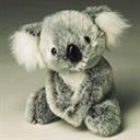 koala(102150)