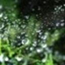 韩波的流浪(107505)