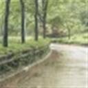 齐雨103911(103911)