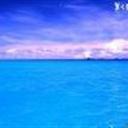 sunsea(846351)