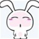 泡沫荭嗏(116666)
