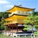豫北浪子(104700)