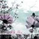 稻草的格调(112760)