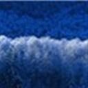 SNOW116790(116790)