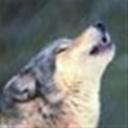 荒原狼100982(100982)