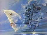 爱情·蝴蝶·梦