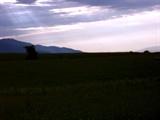 那拉提草原(8)