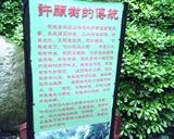 宋城-许愿树的传统