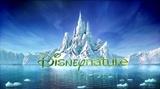 迪士尼自然