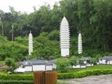 去年在深圳世界公园3