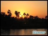 这便是梦里见到的尼罗河的夕阳