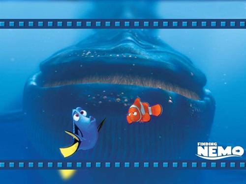 一生必看的动画片——海底总动员02