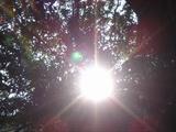 太阳当空照啊